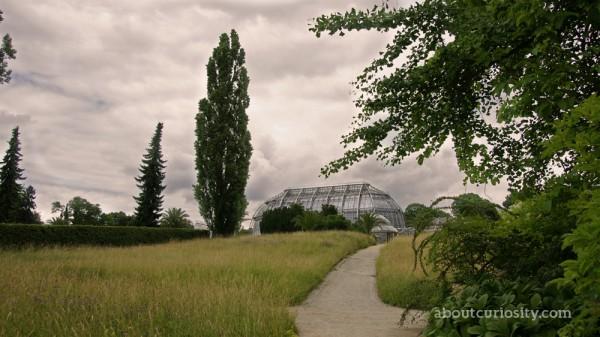 glasshouse at botanical garden berlin