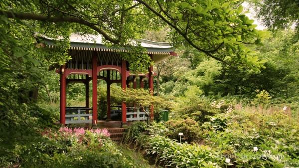 tea pavillion at botanical garden berlin