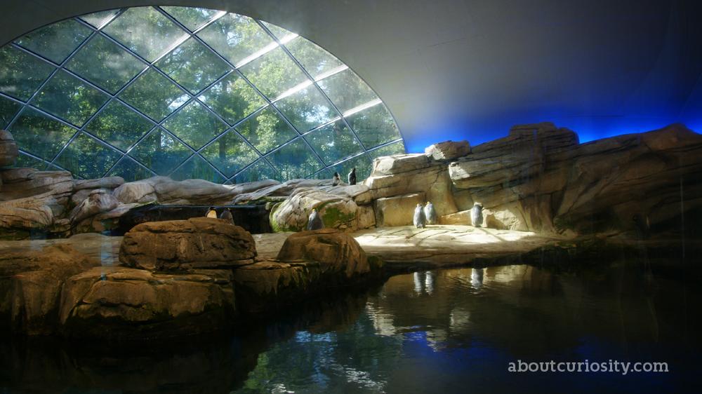 zoological garden berlin. Black Bedroom Furniture Sets. Home Design Ideas