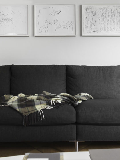 grey sofa with black and white art