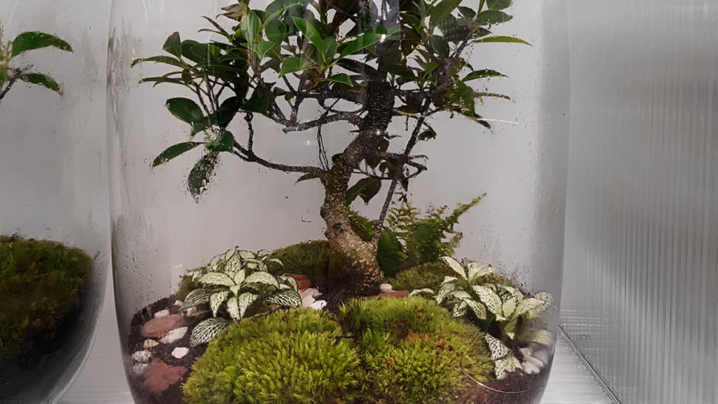 greenfactory